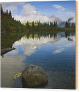 Majesty Revealed Wood Print by Mike  Dawson