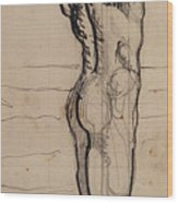 Male Act   Study For The Truth Wood Print by Ferdninand Hodler