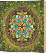 Mandala Evergreen Wood Print by Bedros Awak