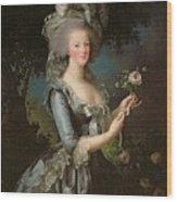 Marie Antoinette Wood Print by Elisabeth Louise Vigee Lebrun