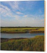 Marshland Charleston South Carolina Wood Print by Susanne Van Hulst