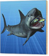 Megalodon Wood Print by Corey Ford