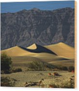 Mesquite Flat Dunes - Death Valley California Wood Print by Christine Till