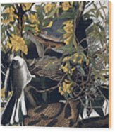 Mocking Birds And Rattlesnake Wood Print by John James Audubon