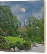 Moonrise Meditation Wood Print by Charles Warren