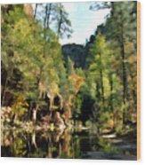 Morning At Oak Creek Arizona Wood Print by Kurt Van Wagner