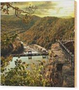 Morning Sunshine Wood Print by Lj Lambert