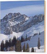 Mountain High - Salt Lake Ut Wood Print by Christine Till