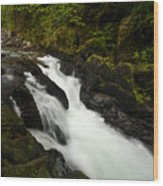 Mountain Stream Wood Print by Mike Reid