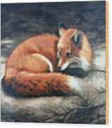 Naptime In The Pine Barrens Wood Print by Sandra Chase