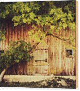 Natures Awning Wood Print by Julie Hamilton