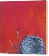 Nest On Red Wood Print by Tilly Strauss