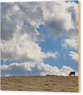 Not A Cow In The Sky Wood Print by Peter Tellone