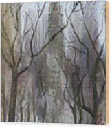 Nyc Central Park 1995 Wood Print by Ylli Haruni