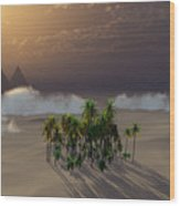 Oasis Wood Print by Richard Rizzo