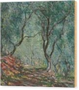 Olive Trees In The Moreno Garden Wood Print by Claude Monet