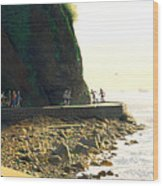 On The Seawall  Stanley Park Wood Print by Neil Woodward