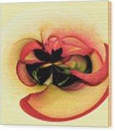 Open To Imagination Wood Print by Teresa Zieba