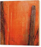Orange Wall By Michael Fitzpatrick Wood Print by Mexicolors Art Photography