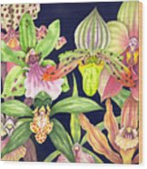 Orchids  Wood Print by Lucy Arnold