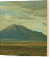 Outside Of Taos Wood Print by Phyllis Tarlow