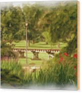 Paint In The Park Wood Print by Jim  Darnall