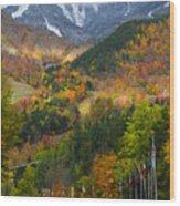 Peaked Wood Print by Mark Papke
