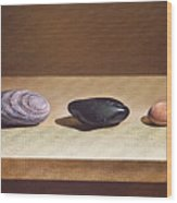 Pebbles On Parade Wood Print by Elena Kolotusha