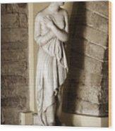 Peering Woman Wood Print by Marilyn Hunt