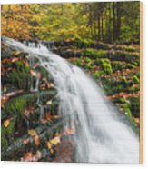 Pennsylvania Autumn Ricketts Glen State Park Waterfall Wood Print by Mark VanDyke