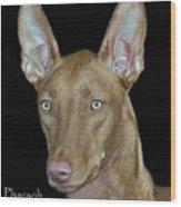 Pharaoh Hound Wood Print by Larry Linton