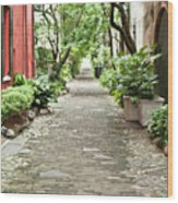 Philadelphia Alley Charleston Pathway Wood Print by Dustin K Ryan