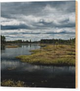 Pine Barrens Wood Print by Louis Dallara