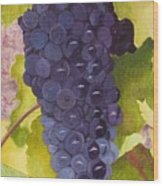 Pinot Noir Ready For Harvest Wood Print by Mike Robles
