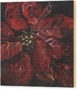 Poinsettia Wood Print by Nadine Rippelmeyer