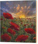 Poppy Field Wood Print by Debra and Dave Vanderlaan