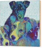 Pound Puppies Wood Print by Jane Schnetlage