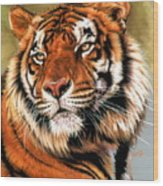 Power And Grace Wood Print by Barbara Keith