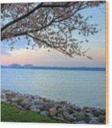 Pretty Potomac Wood Print by JC Findley