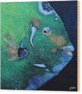 Queen Angelfish Wood Print by Barbara Teller