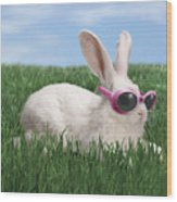 Rabbit With Sunglasses Wood Print by George Caswell