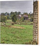 Rainy Day On The Farm Wood Print by Douglas Barnett