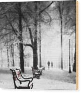 Red Benches In A Park Wood Print by Jaroslaw Grudzinski