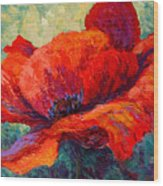 Red Poppy IIi Wood Print by Marion Rose