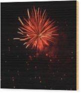 Redburst 2 Wood Print by Vijay Sharon Govender