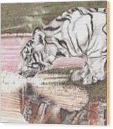 Reflecting Wood Print by Dustin Knighton