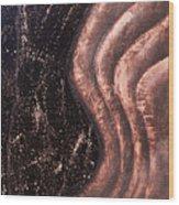 Reverberation Wood Print by Bojana Randall