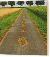 Road In Rural France Wood Print by Elena Elisseeva