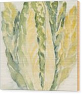 Romaine Wood Print by Linda Bourie