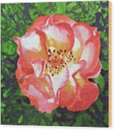 Rose  Wood Print by Irina Sztukowski
